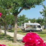 Campeggio Adria