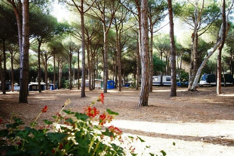 Camping villaggio bella sardinia sardegna for Campingplatze sardinien