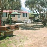 Camping  Internazionale La Playa