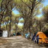 Camping Rosmarina