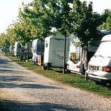 Camping Bosco Pineta